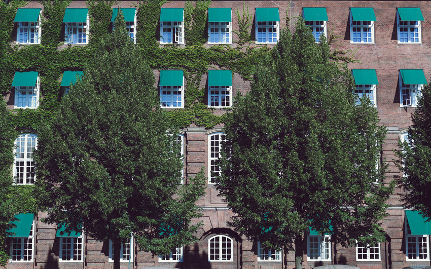 Architecture Building Exterior Built Structure City No People Outdoors Green Color Inspiration Inspirational Copenhagen Copenhagen, Denmark Summer Summertime ♥ Landscape Landscape_Collection Tree Window Residential District Side By Side Full Frame Artist Denmark 🇩🇰 Denmark Amsterdam Amsterdamcity