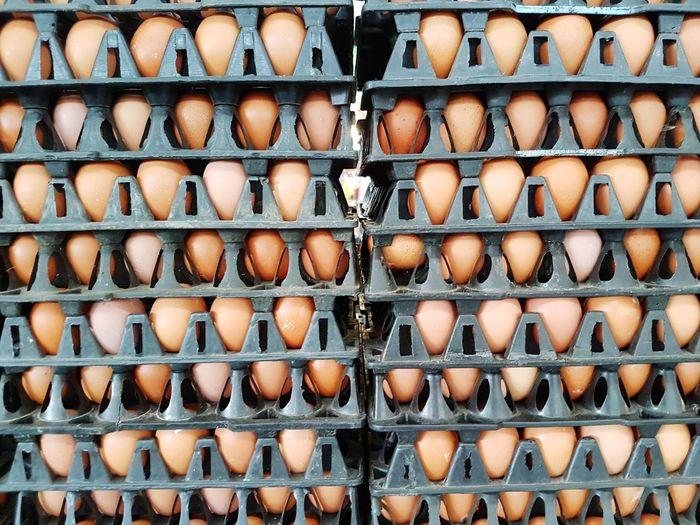 Eggshell. ingredient
