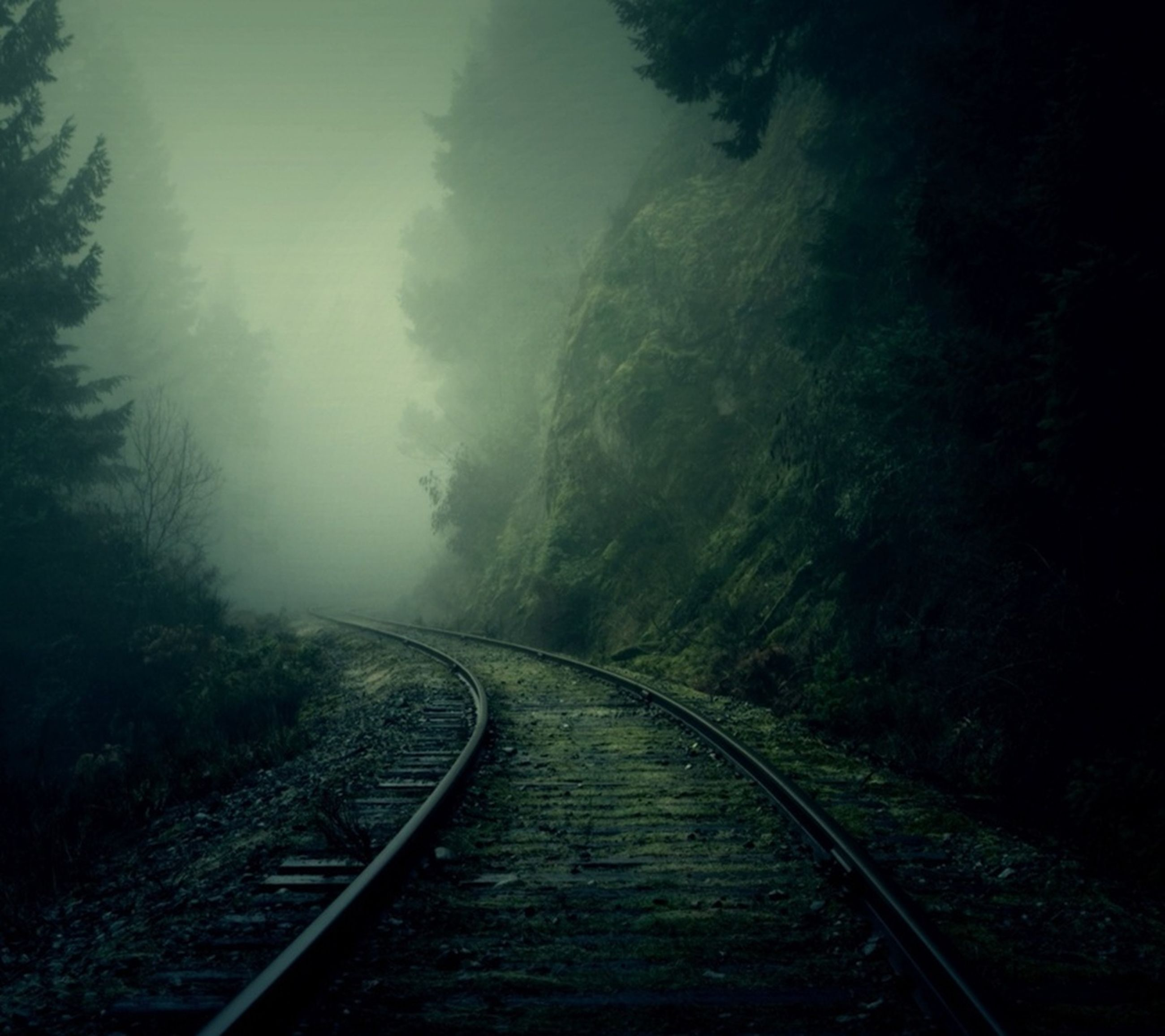 the way forward, railroad track, transportation, diminishing perspective, rail transportation, vanishing point, tree, tranquility, nature, tranquil scene, forest, sky, railing, no people, railway track, outdoors, beauty in nature, mountain, day, empty