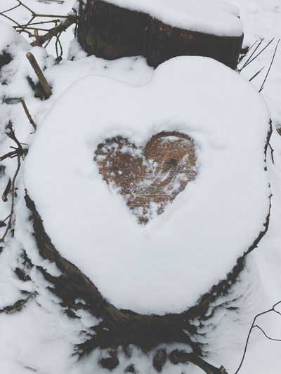 Valentinstag Valentine's Day  ❤ Snow Winter Heart Shape Love Cold Temperature Nature No People
