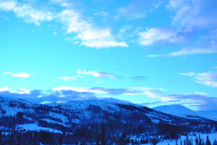 Norway Beauty In Nature Cloud - Sky Cold Temperature Landscape Nature Snow Winter