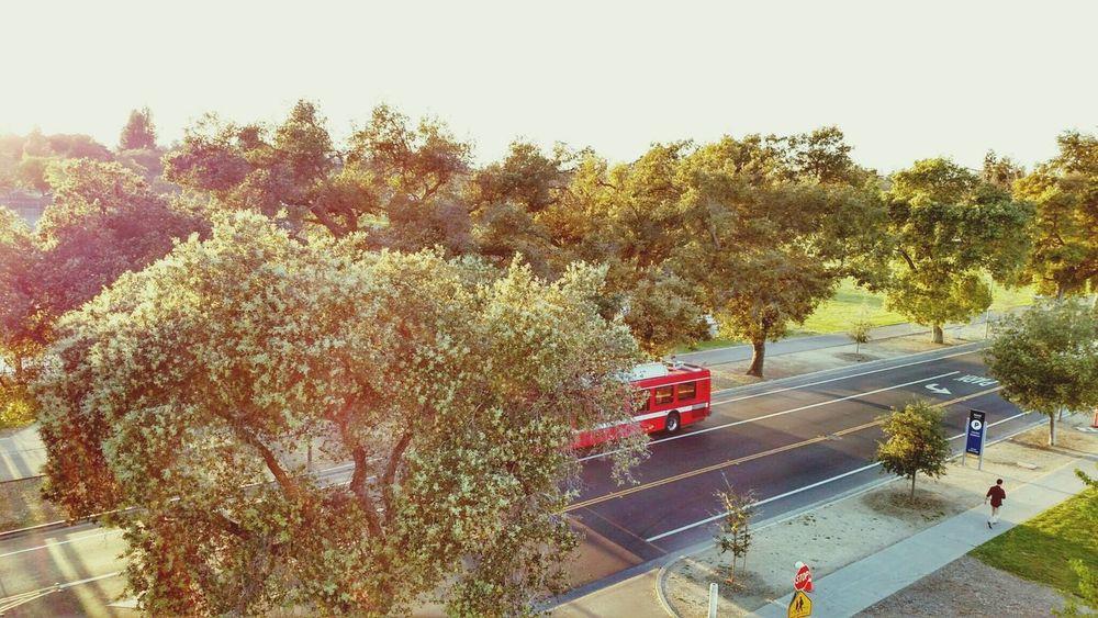 Picture taken from North parking structure at UC Davis Ucdavis Beautiful Urban Landscape