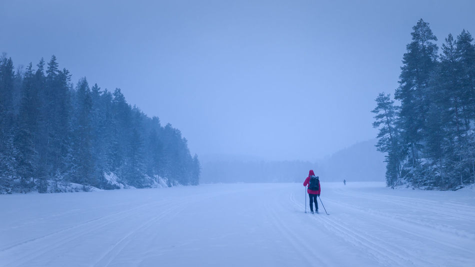 Getting some fresh air in the evening. Self Portrait Peace Tranquility Freedom Recreation  Norway Forest Lake Crosscountry Skiing Crosscountry Men Scenics - Nature One Person Nature Leisure Activity Beauty In Nature Rear View Lifestyles Real People Tree Winter Snow Bluehour Evening