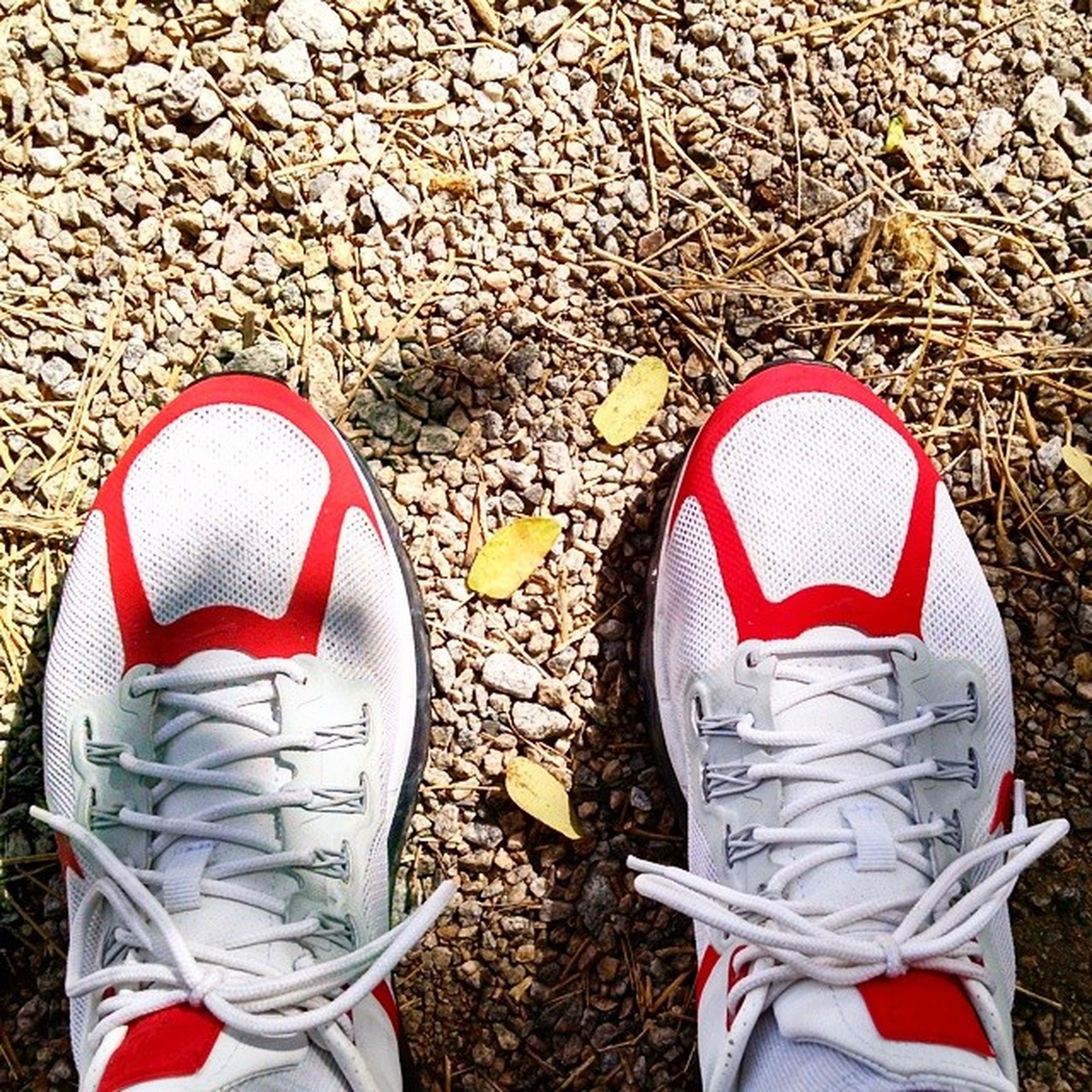 shoe, red, footwear, standing, low section, canvas shoe, white color, high angle view, person, day, close-up, pair, lifestyles, outdoors, creativity, leisure activity, directly above, identity