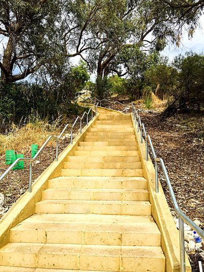 Fitness: Stairs of Torture Fitness Stairs Stairways Stairs In Nature Fitness Stairs Exercise Alternative Alternative Exercise Staircase Steps Fitness Steps Training Fitness Training Motivation Healthy Health And Wellness Lifestyle Healthy Lifestyle Torture Pain Inner Strength RePicture Growth Muscle