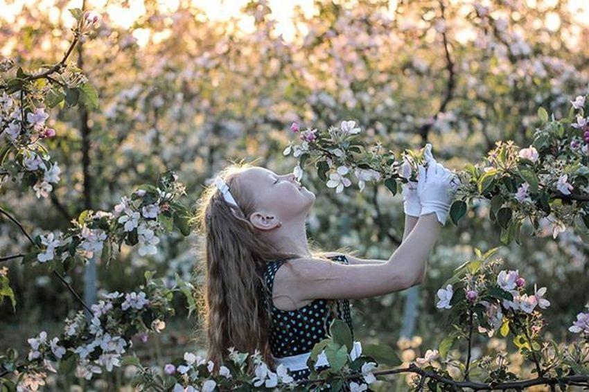 Александрочка беларусь Природа доченька весна сад яблони красота Belarus Nature Photo Spring Daughter Lusienka_pilets Canon Beutiful