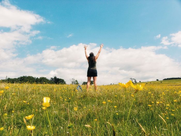 Rear view of woman with arms raised standing amidst yellow flowers on field