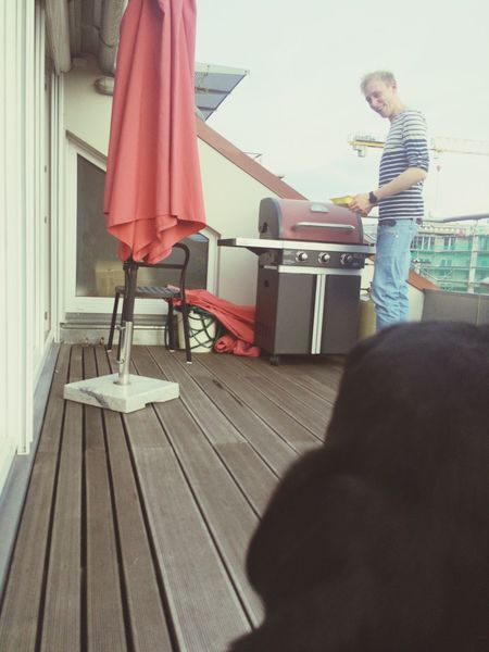 Dogs View BBQ Time