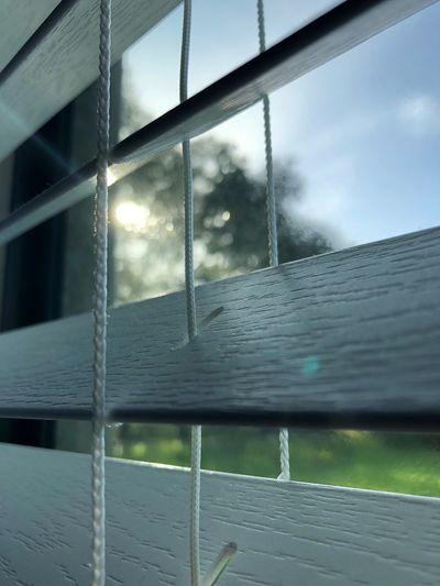 Thru a window... Noedit Nofilter IPhoneX IPhoneography Iphonephotography ShotOnIphone Window Glass - Material Window Wet Nature Water Sky Transparent Sunlight Glass
