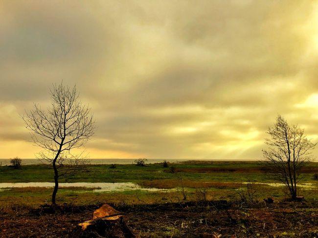 Afternoon Denmark EyeEm Tadaa Family Cloud - Sky