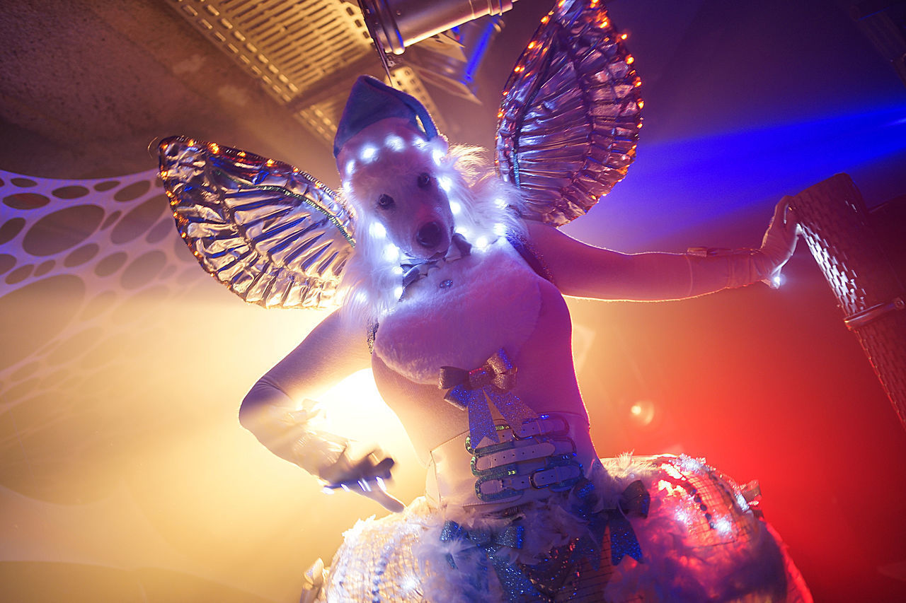 LOW ANGLE VIEW OF WOMAN WITH ILLUMINATED LIGHTING EQUIPMENT IN NIGHTCLUB