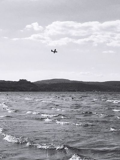 Sea Flying Mid-air Water Sky Nature Day Beauty In Nature Scenics Outdoors Cloud - Sky Horizon Over Water No People Blackandwhite Black And White Monochrome Wave Flying High EyeEm Best Shots Summer Canadair Nature Black & White Blackandwhite Photography Black Background