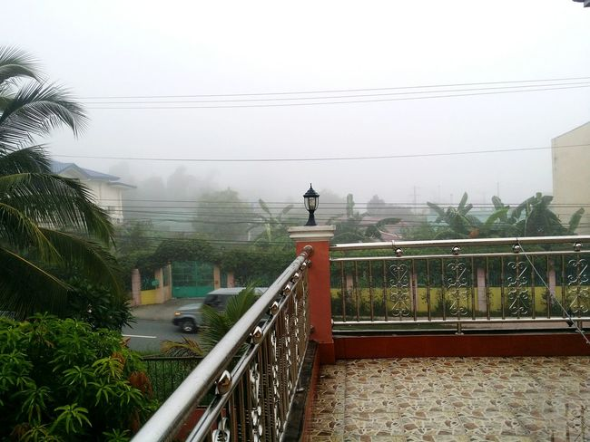Foggy Morning Rainy Season Cold Morning Outside Balcony Terrace ☁☕