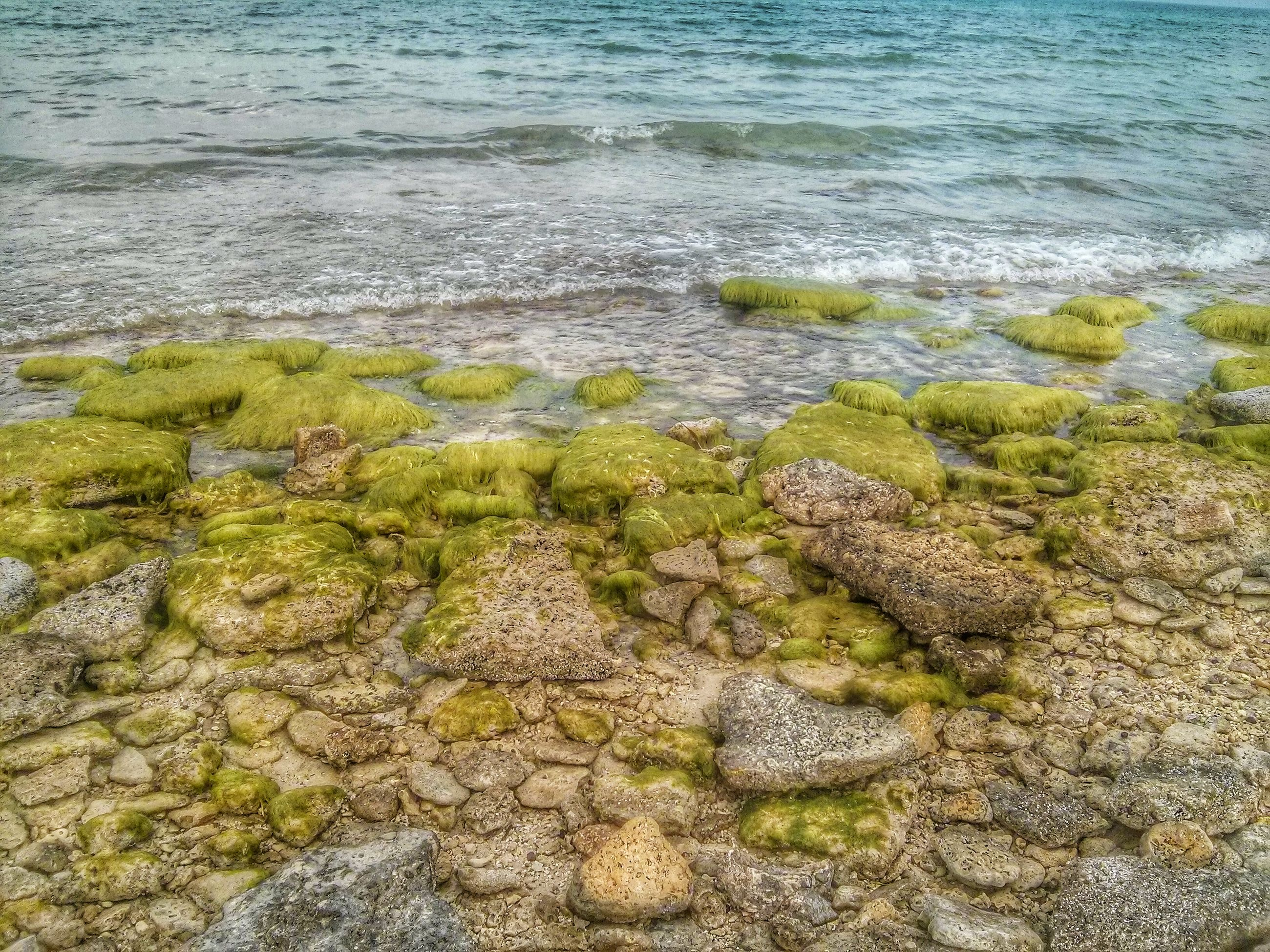 water, sea, high angle view, tranquility, rock - object, nature, beauty in nature, tranquil scene, beach, scenics, shore, day, coastline, outdoors, idyllic, rock, stone - object, rippled, no people, sunlight