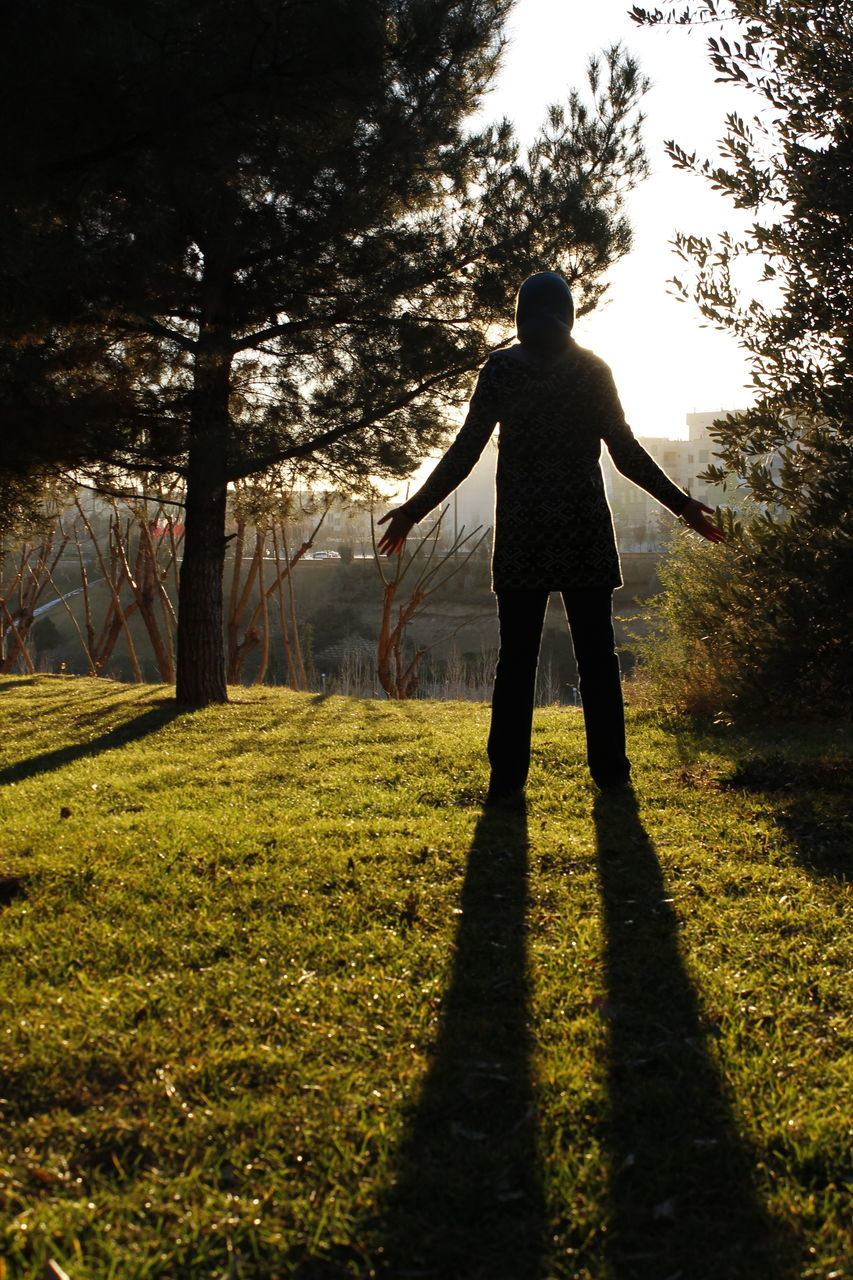 plant, one person, real people, tree, sunlight, land, field, nature, standing, full length, men, rear view, lifestyles, leisure activity, grass, sky, outdoors, shadow, growth, human arm