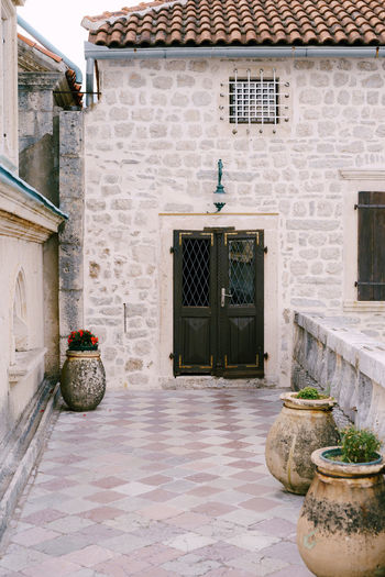 Potted plants on stone wall of building