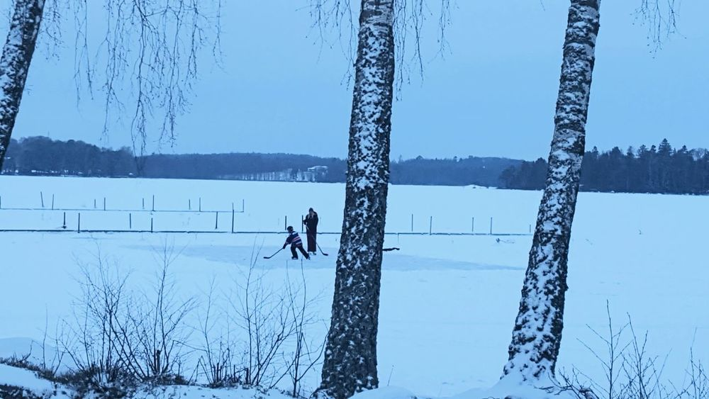 Winter Wonderland Wintertime Winter Winter Trees Tree_collection  Tree Snow Lake View Frozen Lake Ice Outdoors People Together Children Playing Skiing Cold Temperature Beauty In Nature Växjö  Sweden