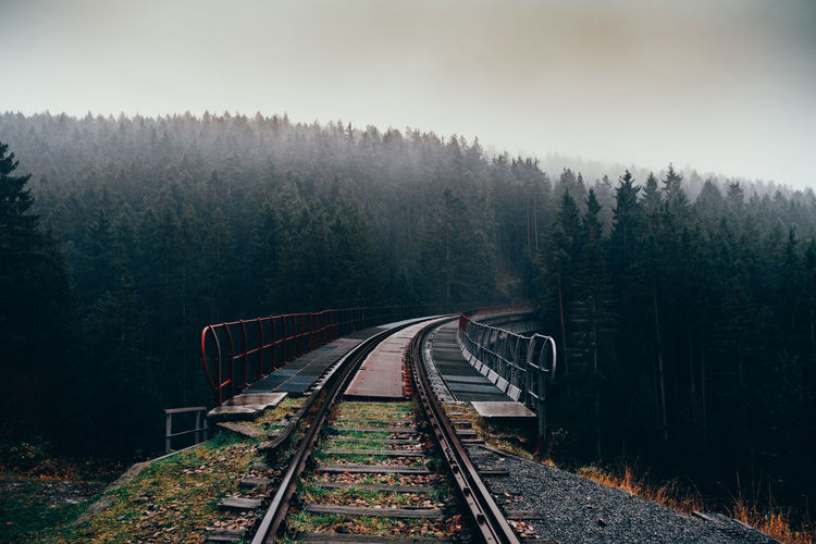 High angle view of railroad track amidst forest