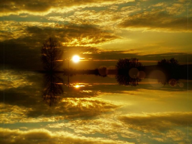 Sunset Reflection Nature Dramatic Sky Beauty In Nature Gold Colored Cloud - Sky Tranquil Scene Tree Sky Day Sunsets Mirrored Mirroreffect