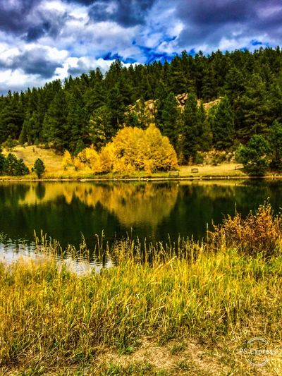 Autumn in Colorado EyeEmbestshots Landscape_Collection Nature Photography EyeEm Selects EyeEm Best Shots Colorado Photography EyeEm Best Shots - Landscape Eyeem Autumn Autumn Collection EyeEm Nature Collection EyeEm Best Shots - Nature Coloradophotographer eyeemphoto Eyeem Market EyeEm Gallery EyeEm Nature Lover Landscape Photography Tree Scenics - Nature Lake Beauty In Nature Tranquility Tranquil Scene Sky Cloud - Sky Nature No People Land Forest Outdoors