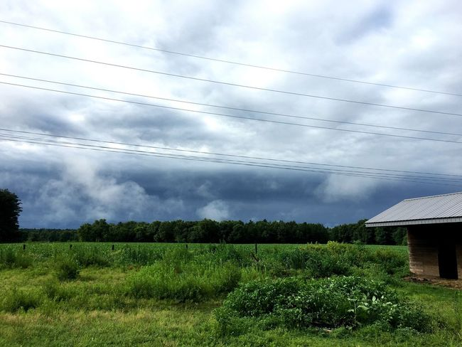 Sky Cloud - Sky Field Cable Landscape Grass Tranquil Scene Storm Pine Trees Storm Clouds Power Line  Field Shed
