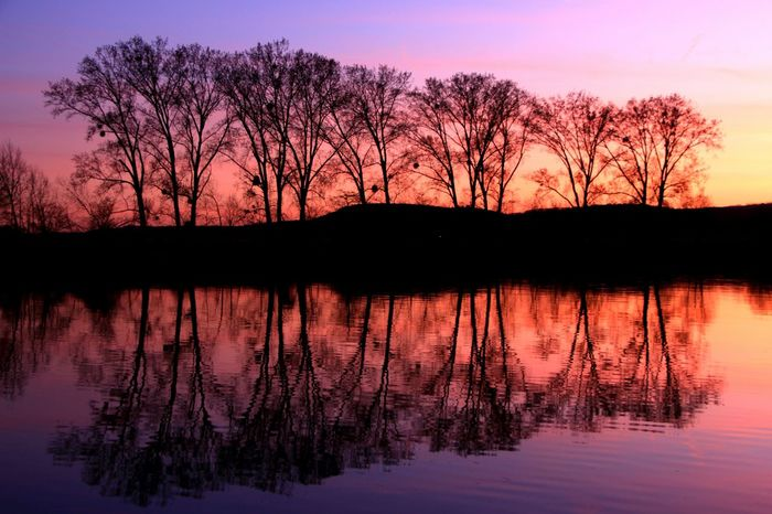 Spiegelbild Water Reflections Watercolor Reflection Obsession Trees Spiegelung Naturelovers Majestic_earth Entspannung Genuss Collourfull Pink Nature Colourful Nature Sillhouette Starting A Trip Pink Color Pink Sky Pinksky Pink! Pinkclouds Pink River River View TreePorn No Filter, No Edit, Just Photography Colour Of Life EyeEm Selects