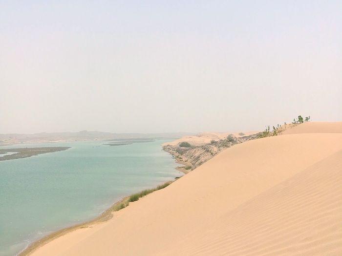 EyeEm Best Shots EyeEmNewHere EyeEm Selects Magnomphotos Sand Dune Water Sea Desert Beach Clear Sky Sand Blue Summer Horizon