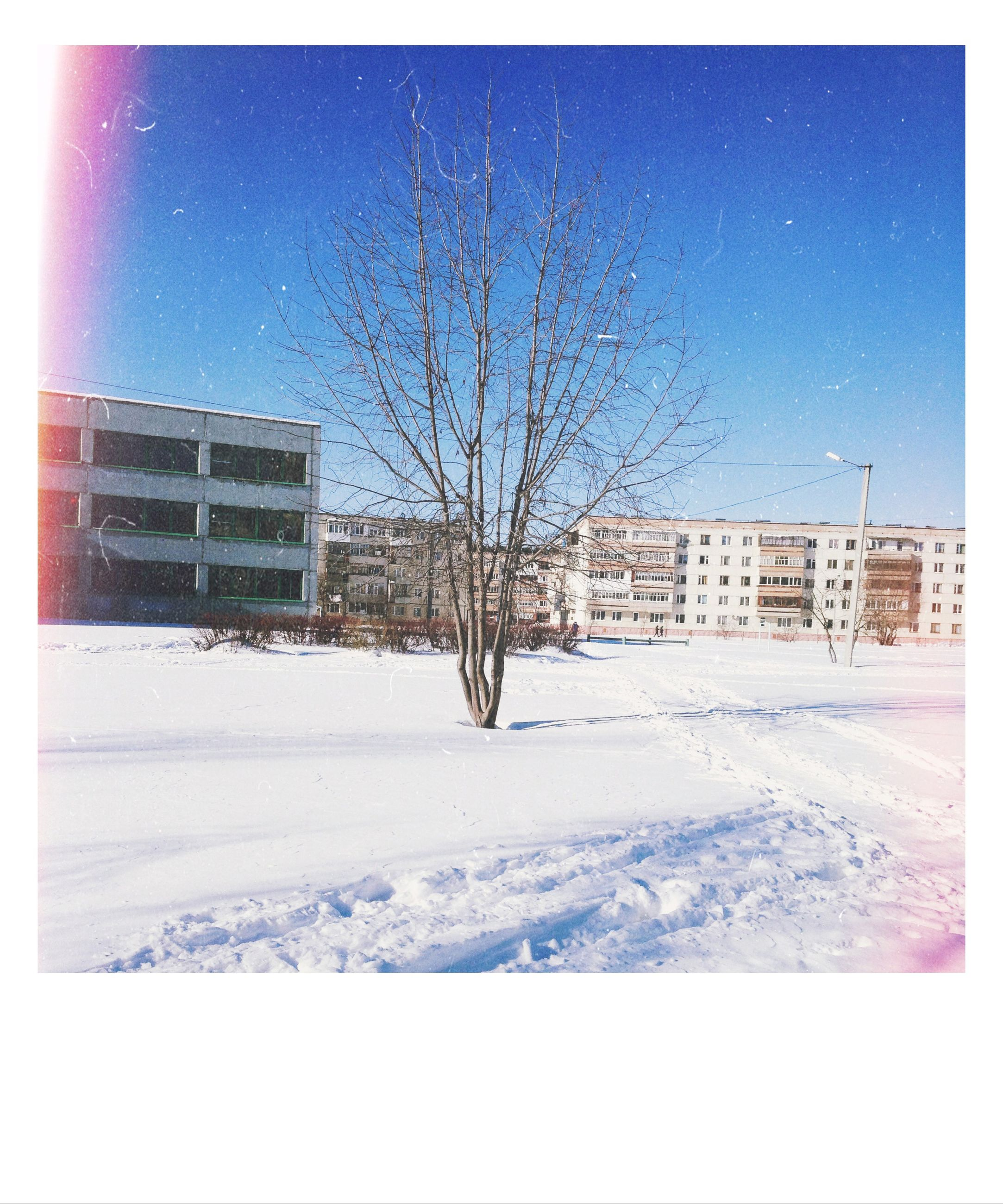snow, winter, cold temperature, season, transfer print, weather, covering, building exterior, bare tree, built structure, architecture, auto post production filter, blue, frozen, house, tree, clear sky, field, nature, snow covered