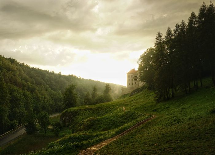 Pieskowa Skała after a summer rain. Countryside Countryroads Sony A6000 Travel Travel Destinations Landscape_photography Poland EyeEmNewHere Szlak Orlich Gniazd Castle Castles History Through The Lens  Tree Fog Sky Grass Cloud - Sky Architecture Atmospheric Mood Fort Tourist Attraction
