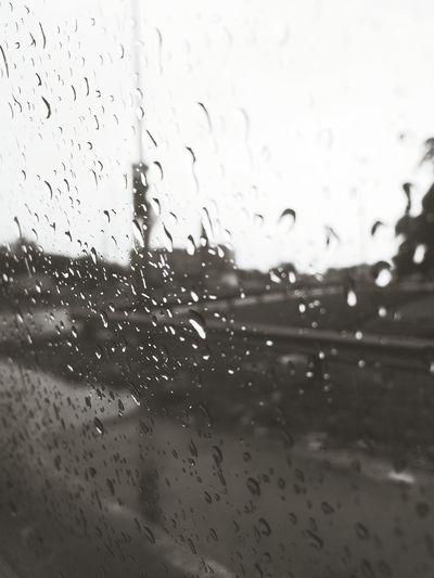 Rain + Cold = SLEEP :3