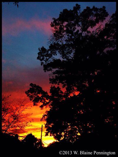 Storm Sky Sunset Sunset Sky Trees
