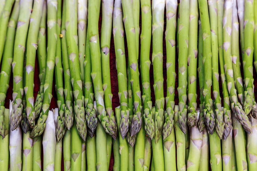 Abundance Arrangement Asparagus Backgrounds Close-up Day Espargos Full Frame Green Green Color Growth In A Row Large Group Of Objects Natural Pattern Nature No People Outdoors Repetition Side By Side