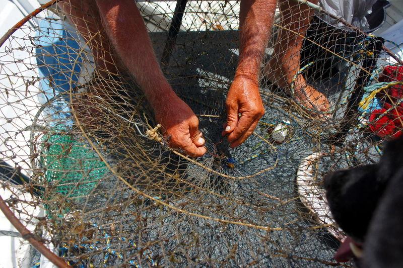 Low section of men fishing net