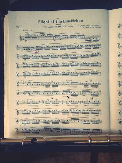 Flight Of The Bumblebee on Flute is a Killer