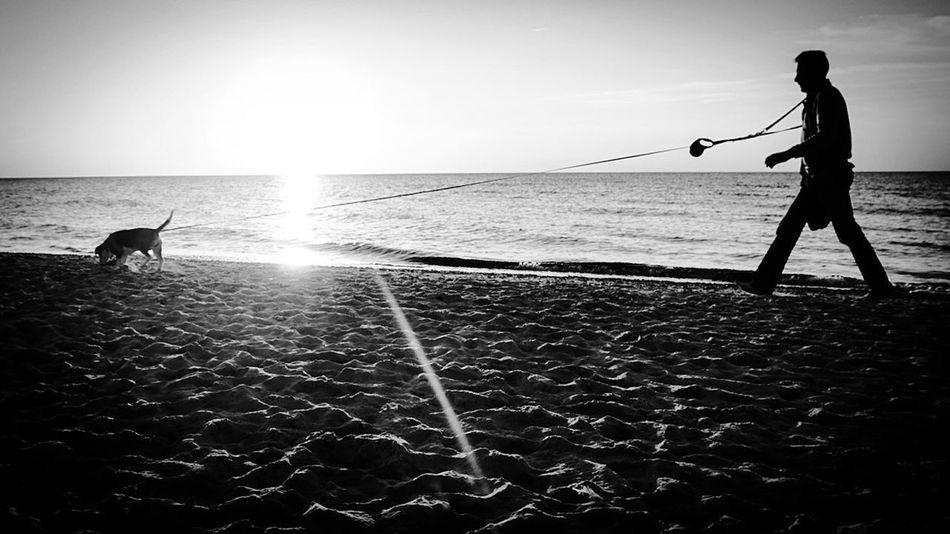 Sunset Sunset Silhouettes Longline Sun Dog Man Baltic Sea Balticsea Blackandwhite Sea Silhouette Water first eyeem photo