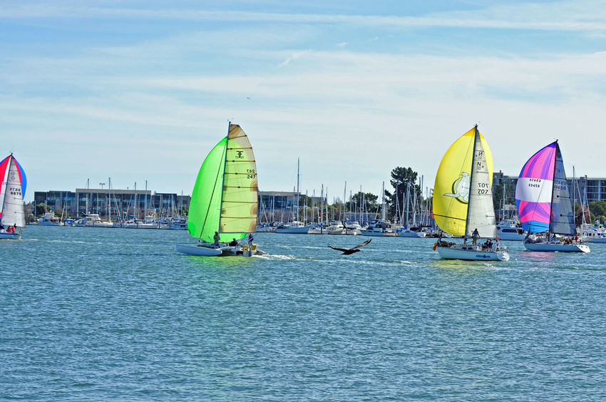 Sailboats Racing @ Embarcadero Cove 6 Action Sports Pastel Power Sailboats Tacking Colorful Sails