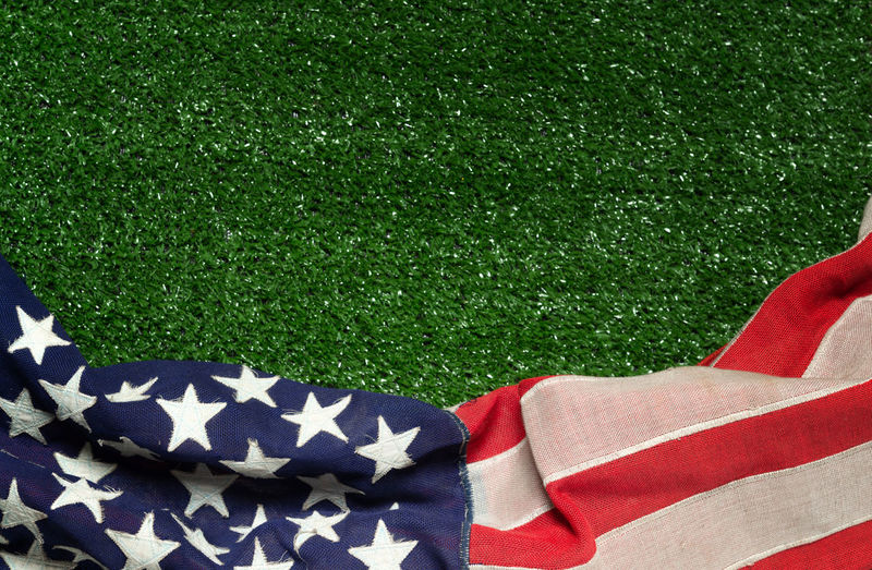 4th America American Bee Color Day Field Flag Fourth Freedom Glory Grass Green Holiday Honor Independence July Landscape Marker Memory Military Nation National Nobody Park Patriot Patriotic Patriotism Pride Red Remember Small Spring Star States Stripes Summer Symbol Symbolic  United Us USA Veteran Wasp Waving White Wind Plant Green Color Pattern No People High Angle View Nature Lawn Textile Land Relaxation White Color Lying Down Outdoors