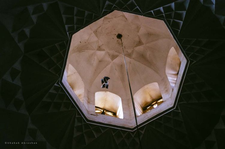 Pigeon in the mosque Indoors  Pattern Art And Craft Design No People High Angle View Architecture Old Mosque