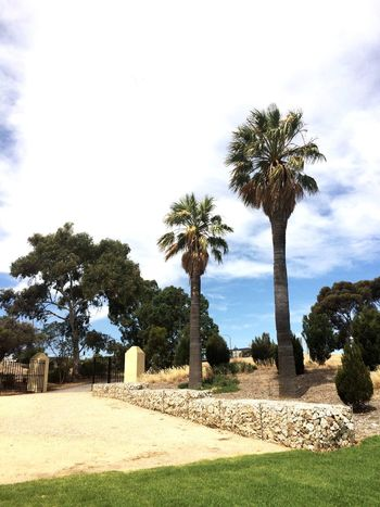 Narnungga Park Adelaide South Australia Palm Trees Gates looks like your in the Country but really your in City