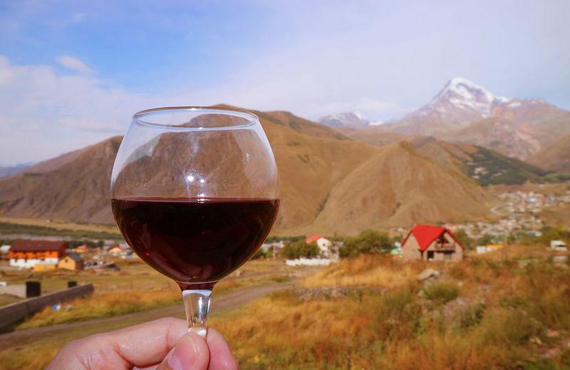 Man holding glass of wine against mountain range