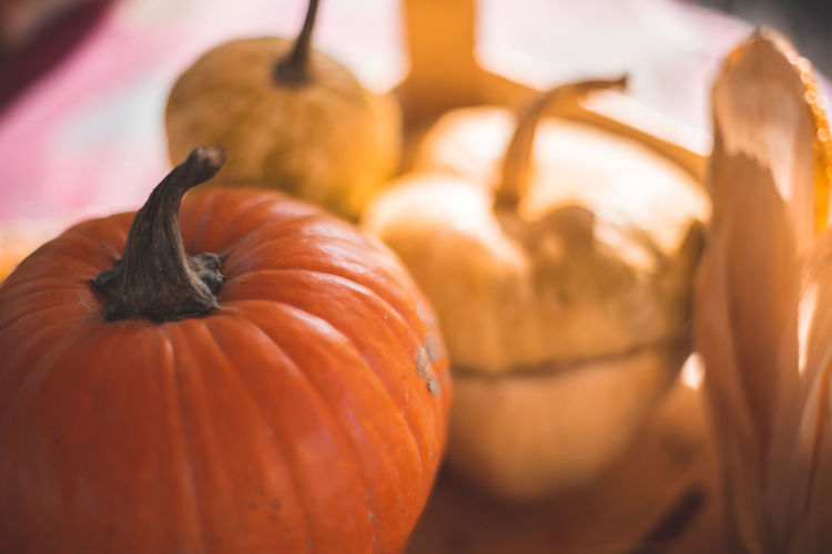 Autumn Mood Food Food And Drink Pumpkin Vegetable Freshness Healthy Eating Orange Color Halloween Autumn Wellbeing Celebration Close-up No People Selective Focus Fruit Agriculture Nature Holiday - Event Still Life Focus On Foreground Ripe