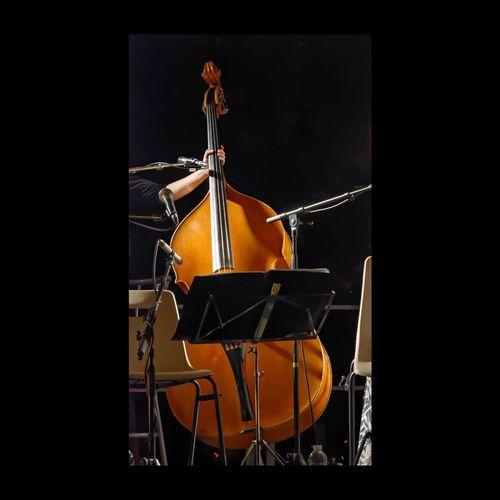 """La contrebasse du """"Royal Ukulélé Touraine Orchestra"""" Concert Contrebasse Bass Double Bass Musique Eyem Best Shots EyeEmBestPics Concert Photography Live Music Amboise"""