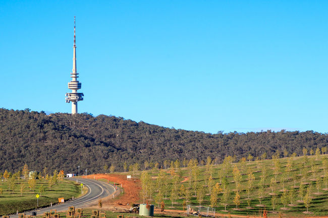 Fields with Canberra's tower in the background Architecture Blue Building Exterior Built Structure Clear Sky Communication Copy Space Day Global Communications Land Nature No People Outdoors Plant Sky Spire  Tall - High Tourism Tower Travel Travel Destinations Tree