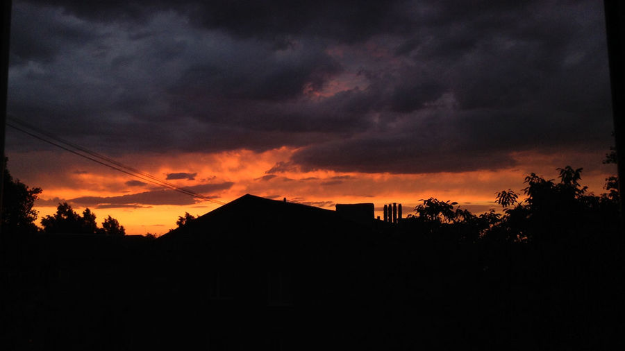 Silhouette of trees and houses against dramatic sky