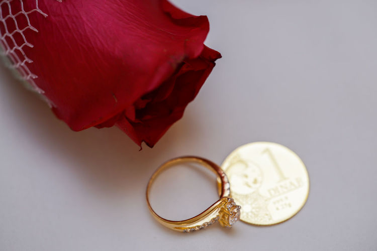 High Angle View Of Red Rose With Diamond Ring And Gold Coin On White Background