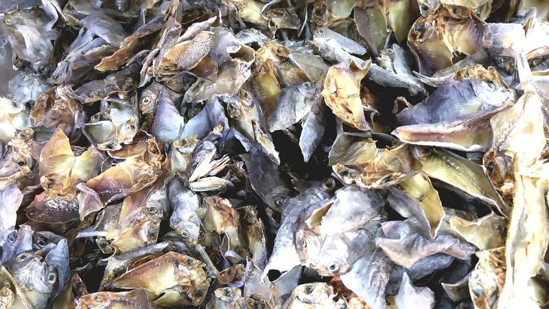 """""""Danggit"""" or dried-fish in the Philippines. (: Food Eyeem Philippines Manila, Philippines Localdelicacy Localfood Patterns Check This Out"""