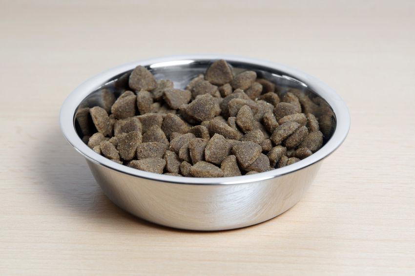 Bowl Cat Food Dry Dry Cat Food Feeding  Kibble Pet Food