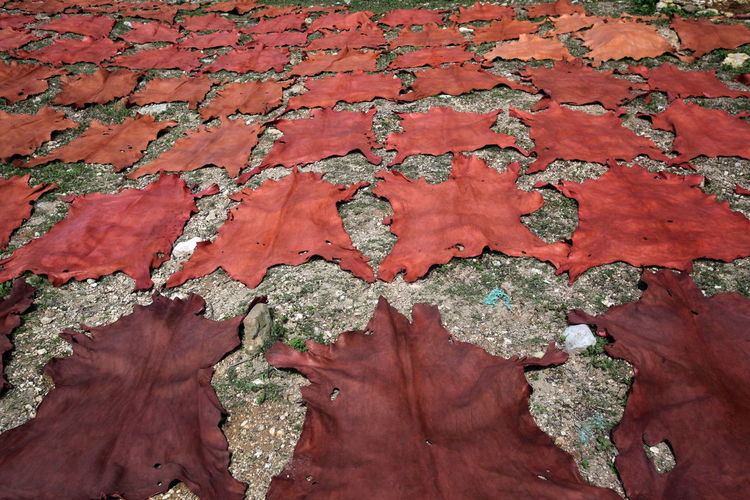 High angle view of dyed fabrics drying on field