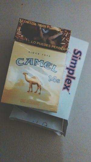 Desayuno Time  Simplex Camel Grungegirl