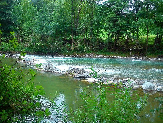 River Hi! Relaxing